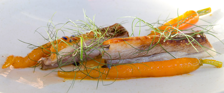Lamb breast carrots