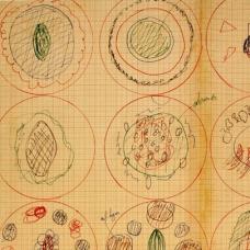 ferran-adria-drawing-exhibit-sqr