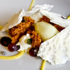 goat-cheese-mousse-sqr