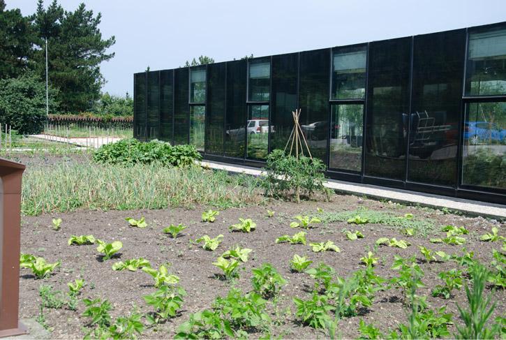 eneko-atxa-arzumendi-garden