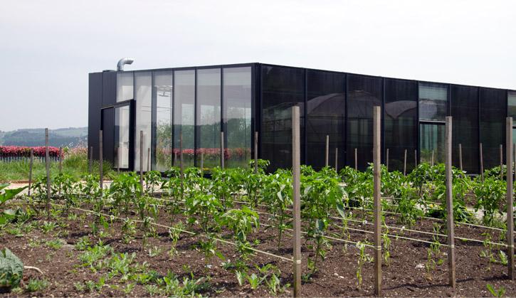 eneko-atxa-garden-3