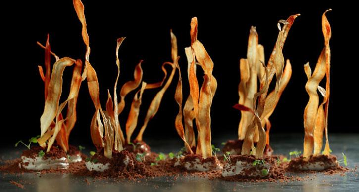 Funky Gourmet Salsify in Soil