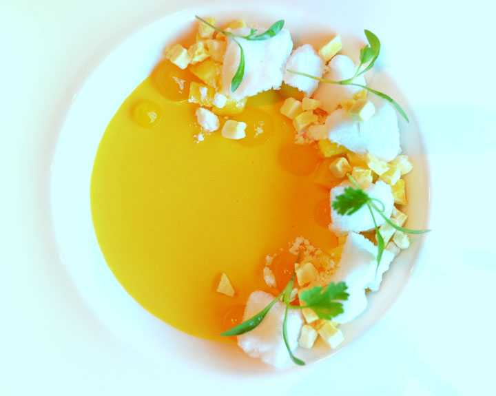 Modernist Mango Custard with Carbonated Calamansi Gel and Coconut Sorbet