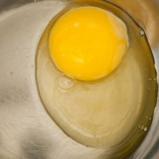 Lecithin - Raw egg -sqr