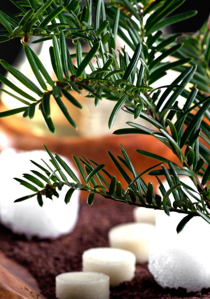 The cedar modernist mixology cocktail zoom
