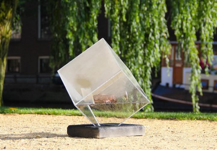 Solar sous-vide Sunshine Steak - Amsterdam