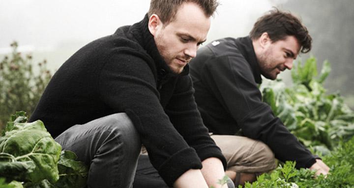 radio-chefs-farm
