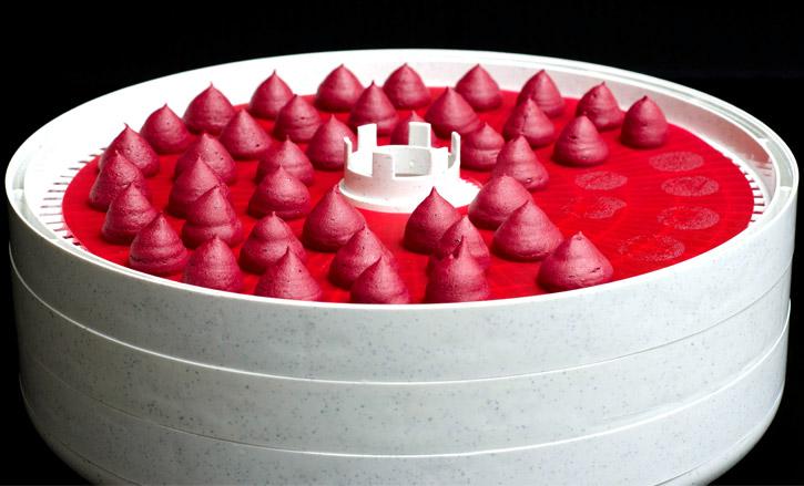 beetroot-puff-dehydrator