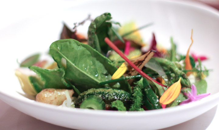 Royal Mail Garden salad by Chef Dan Hunter