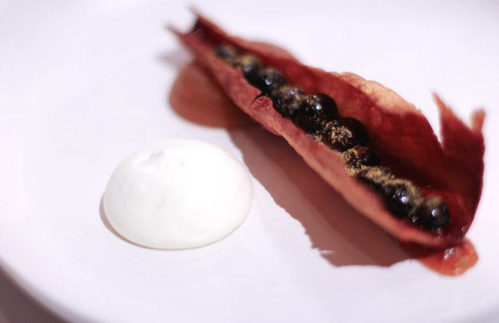 Royal Mail Parsnip Blueberries by Chef Dan Hunter