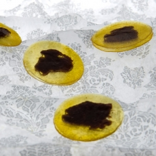 Mango and Black Olive Discs -sqr