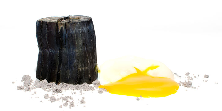 Edible charcoal, edible ashes, 64 eggº