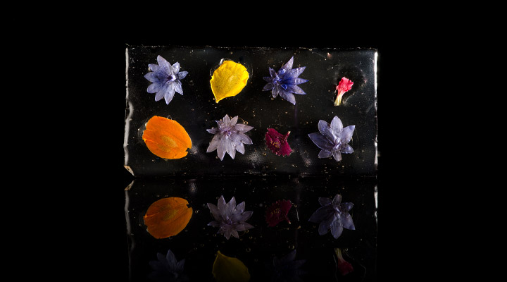 Edible Flower Glass