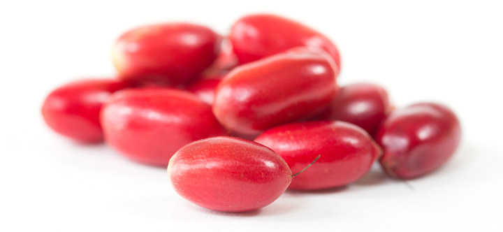 miracle-berries-fresh-bulk
