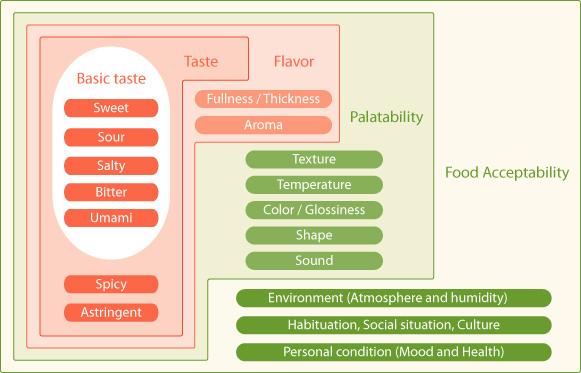 Umami - how humans experience taste