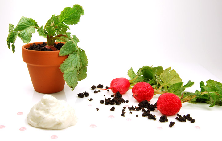 iSi Gourmet Whip Goat Cheese Foam, Dried Olive Soil, Radishes